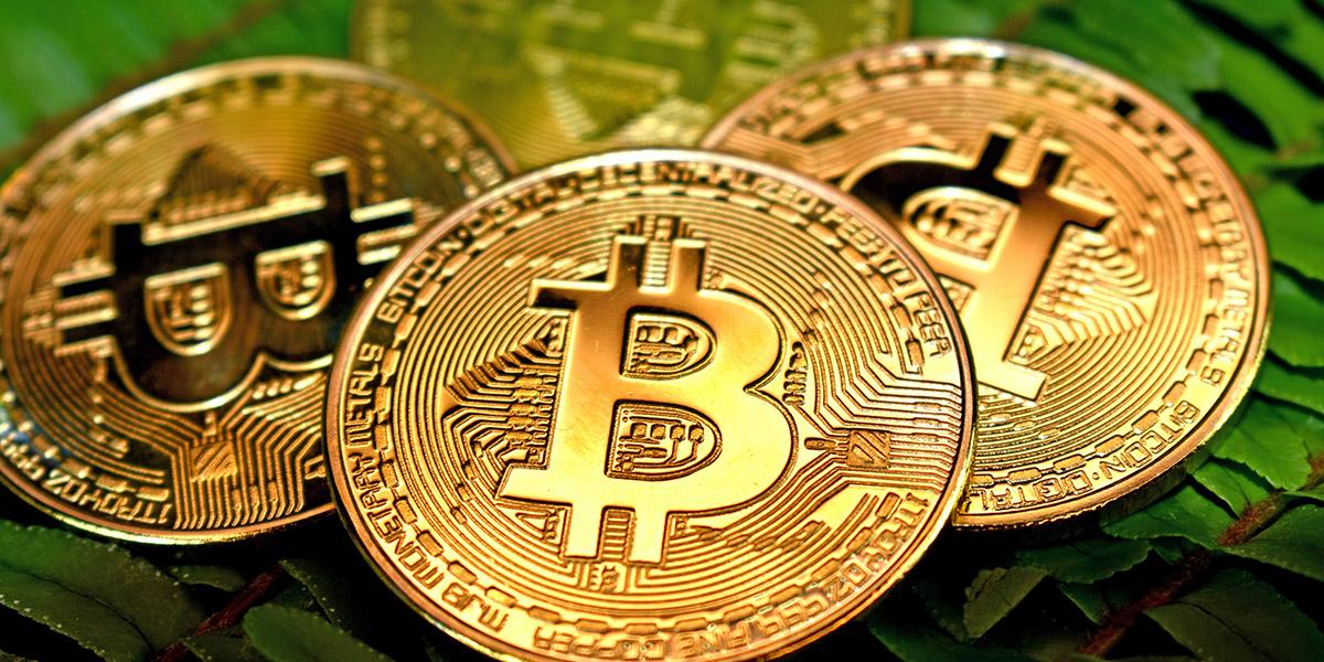 Seetee köper 1170 bitcoin